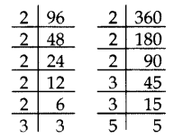 Important Questions for Class 10 Maths Chapter 1 Real Numbers 2