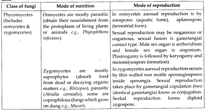 NCERT Solutions For Class 11 Biology Biological Classification Q12