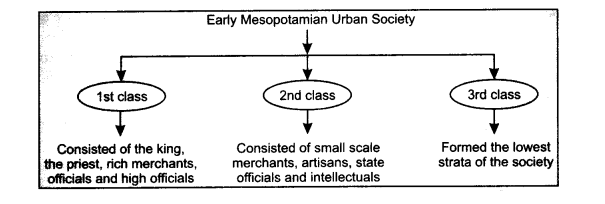 NCERT Solutions for Class 11 History Chapter 2 Writing and City Life LAQ Q3