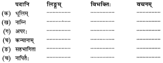 NCERT Solutions for Class 8 Sanskrit Chapter 11 सावित्री बाई फुले Q7