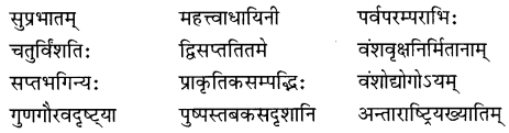 NCERT Solutions for Class 8 Sanskrit Chapter 9 सप्तभगिन्यः Q1