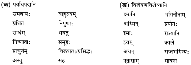 NCERT Solutions for Class 8 Sanskrit Chapter 9 सप्तभगिन्यः Q2