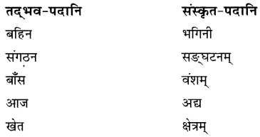 NCERT Solutions for Class 8 Sanskrit Chapter 9 सप्तभगिन्यः Q6.1