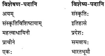 NCERT Solutions for Class 8 Sanskrit Chapter 9 सप्तभगिन्यः Q7