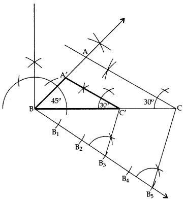 Important Questions for Class 10 Maths Chapter 11 Constructions 15