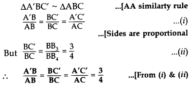 Important Questions for Class 10 Maths Chapter 11 Constructions 23