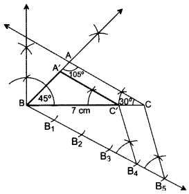 Important Questions for Class 10 Maths Chapter 11 Constructions 24
