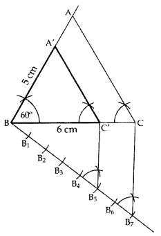 Important Questions for Class 10 Maths Chapter 11 Constructions 3