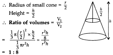 Important Questions for Class 10 Maths Chapter 13 Surface Areas and Volumes 3