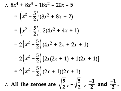 Important Questions for Class 10 Maths Chapter 2 Polynomials 22