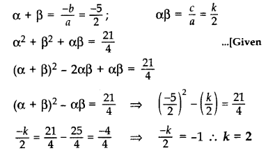 Important Questions for Class 10 Maths Chapter 2 Polynomials 24