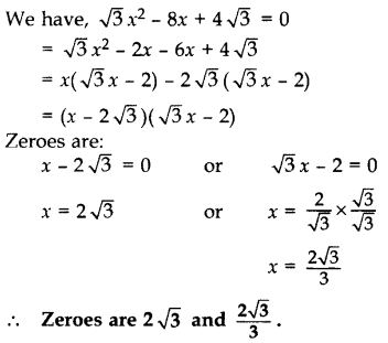 Important Questions for Class 10 Maths Chapter 2 Polynomials 3