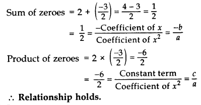 Important Questions for Class 10 Maths Chapter 2 Polynomials 8