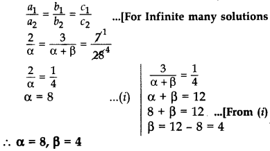 Important Questions for Class 10 Maths Chapter 3 Pair of Linear Equations in Two Variables 20