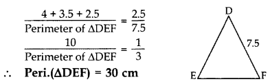 Important Questions for Class 10 Maths Chapter 6 Triangles 3