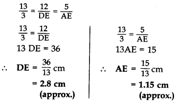 Important Questions for Class 10 Maths Chapter 6 Triangles 54
