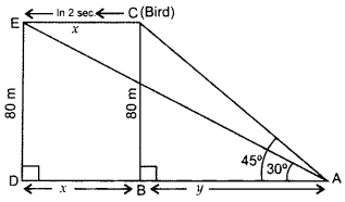 Important Questions for Class 10 Maths Chapter 9 Some Applications of Trigonometry 59