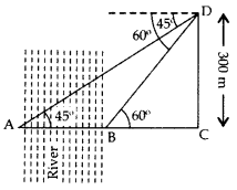 Important Questions for Class 10 Maths Chapter 9 Some Applications of Trigonometry 66