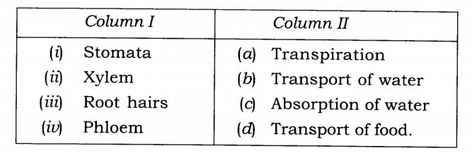 NCERT Solutions Class 7 Science Chapter 11 Transportation in Animals and Plants Q1.1