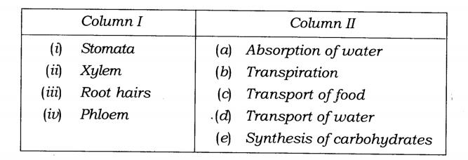 NCERT Solutions Class 7 Science Chapter 11 Transportation in Animals and Plants Q1