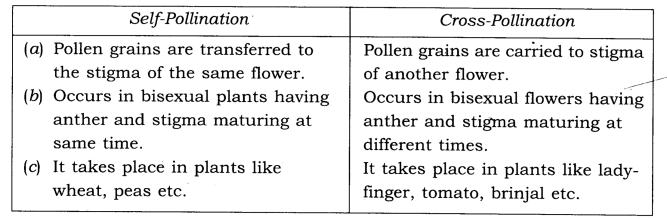 NCERT Solutions Class 7 Science Chapter 12 Reproduction in Plants Q6