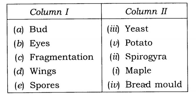 NCERT Solutions Class 7 Science Chapter 12 Reproduction in Plants Q9.1