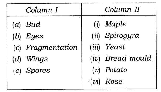 NCERT Solutions Class 7 Science Chapter 12 Reproduction in Plants Q9