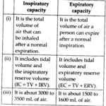 NCERT Solutions For Class 11 Biology Breathing and Exchange of Gases Q13.1