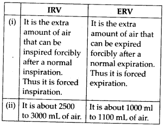NCERT Solutions For Class 11 Biology Breathing and Exchange of Gases Q13