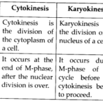 NCERT Solutions For Class 11 Biology Cell Cycle and Cell Division Q2