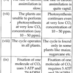 NCERT Solutions For Class 11 Biology Photosynthesis in Higher Plants Q6.1