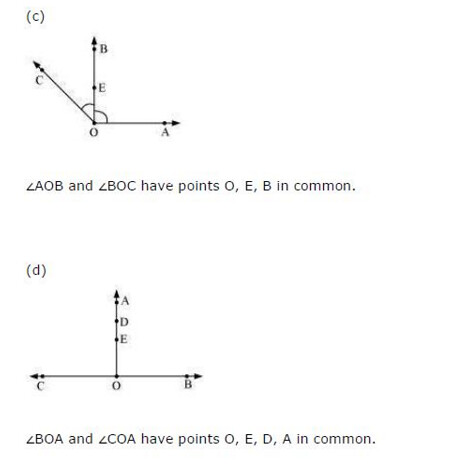 NCERT Solutions For Class 6 Maths Basic Geometrical Ideas Exercise 4.3 Q4