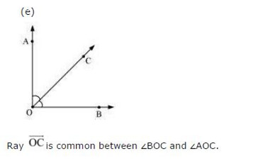 NCERT Solutions For Class 6 Maths Basic Geometrical Ideas Exercise 4.3 Q5