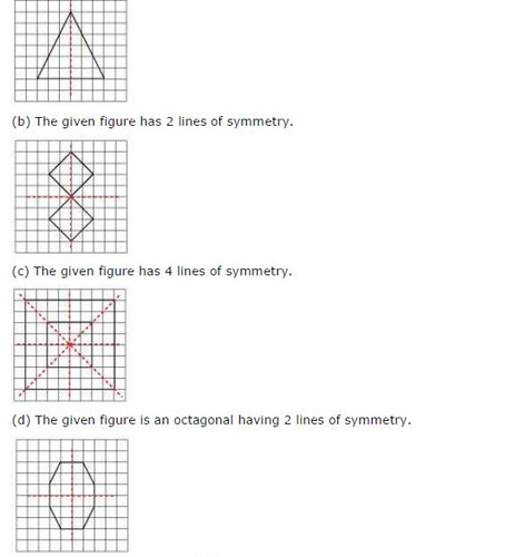 NCERT Solutions For Class 6 Maths Symmetry Exercise 13.2 Q10