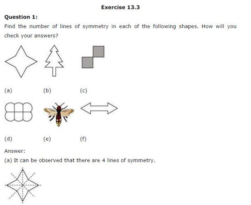 NCERT Solutions For Class 6 Maths Symmetry Exercise 13.3 Q1