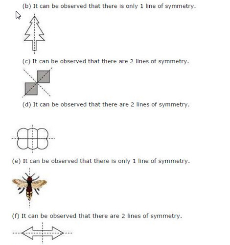 NCERT Solutions For Class 6 Maths Symmetry Exercise 13.3 Q2