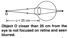 NCERT Solutions for Class 10 Science Chapter 11 Human Eye and Colourful World Chapter End Questions Q8
