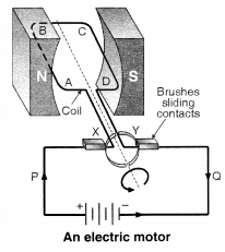 NCERT Solutions for Class 10 Science Chapter 13 Magnetic Effects of Electric Current Chapter End Questions Q11