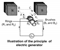 NCERT Solutions for Class 10 Science Chapter 13 Magnetic Effects of Electric Current Chapter End Questions Q16