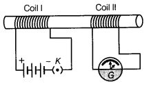 NCERT Solutions for Class 10 Science Chapter 13 Magnetic Effects of Electric Current MCQs Q10