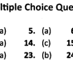 NCERT Solutions for Class 10 Social Economics Chapter 2 Sectors of Indian Economy MCQs Answers