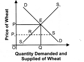 NCERT Solutions for Class 12 Micro Economics Market Equilibrium with Simple Applications SAQ Q4