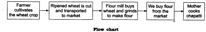 NCERT Solutions for Class 6 Science Chapter 1 Food Where Does It Come From LAQ Q1
