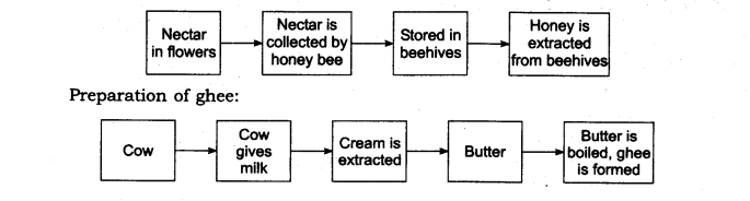 NCERT Solutions for Class 6 Science Chapter 1 Food Where Does It Come From LAQ Q2