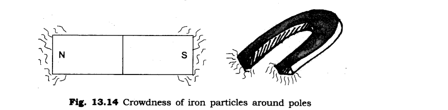 NCERT Solutions for Class 6 Science Chapter 13 Fun with Magnets LAQ Q1