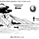 NCERT Solutions for Class 6 Science Chapter 14 Water SAQ Q3