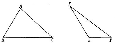 NCERT Solutions for Class 7 Maths Chapter 7 Congruence of Triangles Ex 7.2 Q8