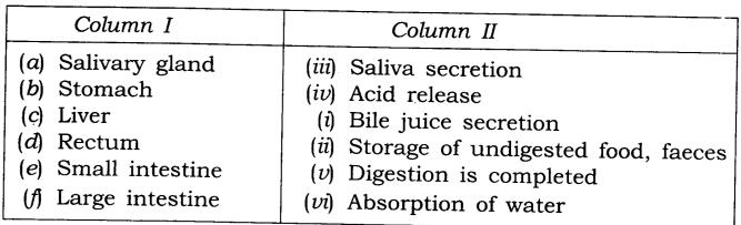 NCERT Solutions for Class 7 Science Chapter 2 Nutrition in Animals Q11.1