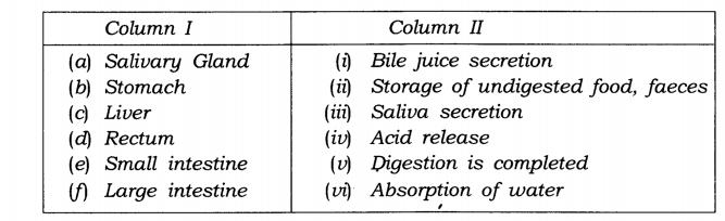 NCERT Solutions for Class 7 Science Chapter 2 Nutrition in Animals Q11