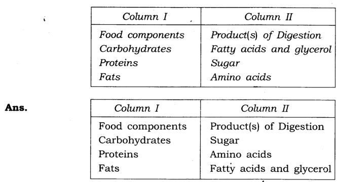 NCERT Solutions for Class 7 Science Chapter 2 Nutrition in Animals Q4